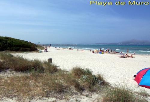 Bild 22 - Ferienwohnung Playa de Muro - Ref.: 150178-429 - Objekt 150178-429