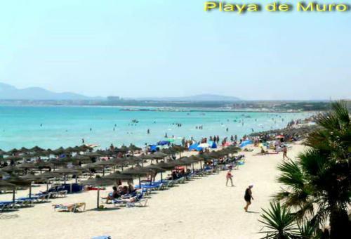Bild 23 - Ferienwohnung Playa de Muro - Ref.: 150178-429 - Objekt 150178-429