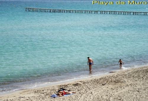 Bild 24 - Ferienwohnung Playa de Muro - Ref.: 150178-429 - Objekt 150178-429