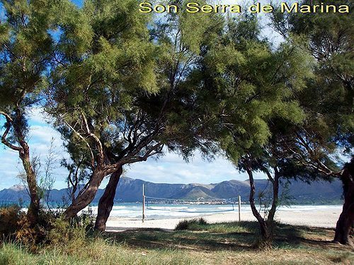 Bild 10 - Ferienhaus Son Serra de Marina - Ref.: 150178-513 - Objekt 150178-513