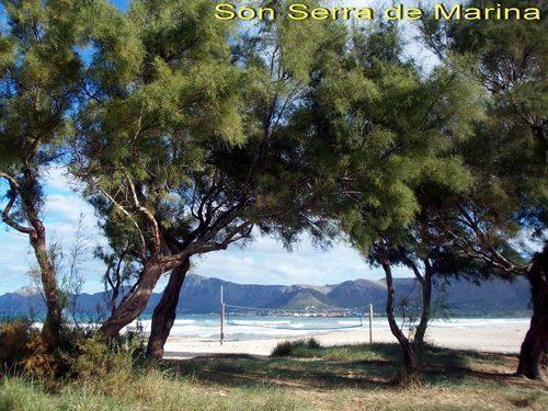 Bild 17 - Ferienhaus Son Serra de Marina - Ref.: 150178-516 - Objekt 150178-516