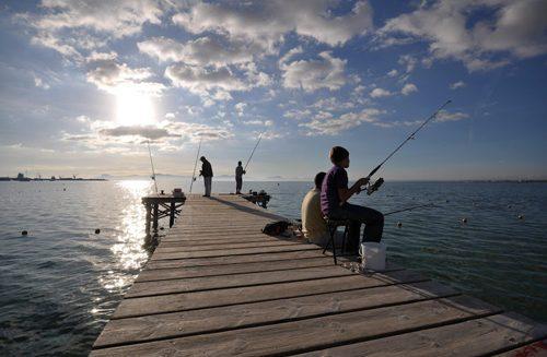 Bild 14 - Ferienwohnung Puerto Alcudia - Ref.: 150178-51 - Objekt 150178-51