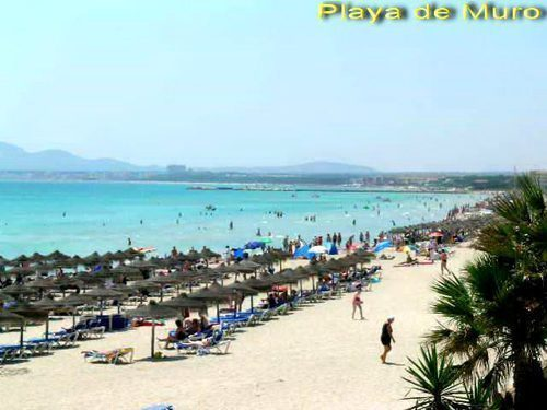 Bild 18 - Ferienwohnung Playa de Alcudia - Ref.: 150178-526 - Objekt 150178-526