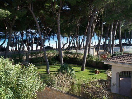 Bild 17 - Ferienhaus Playa de Alcudia - Ref.: 150178-529 - Objekt 150178-529