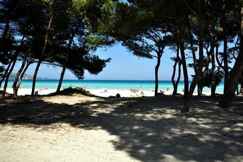 Bild 18 - Ferienhaus Playa de Alcudia - Ref.: 150178-529 - Objekt 150178-529