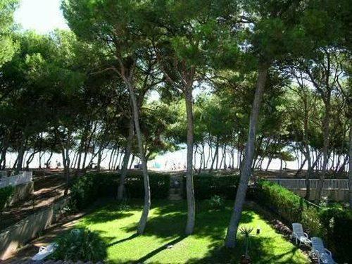 Bild 21 - Ferienhaus Playa de Alcudia - Ref.: 150178-529 - Objekt 150178-529