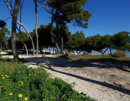 Bild 22 - Ferienhaus Playa de Alcudia - Ref.: 150178-529 - Objekt 150178-529