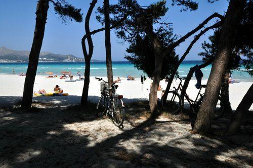 Bild 23 - Ferienhaus Playa de Alcudia - Ref.: 150178-529 - Objekt 150178-529