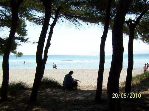 Bild 28 - Ferienhaus Playa de Alcudia - Ref.: 150178-529 - Objekt 150178-529