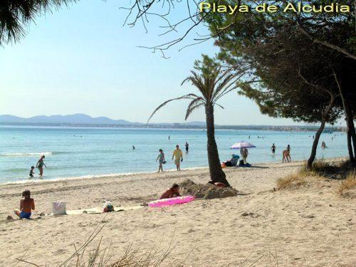 Bild 29 - Ferienhaus Playa de Alcudia - Ref.: 150178-529 - Objekt 150178-529