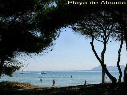 Bild 30 - Ferienhaus Playa de Alcudia - Ref.: 150178-529 - Objekt 150178-529