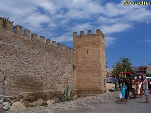 Bild 22 - Ferienwohnung Playa de Alcudia - Ref.: 150178-530 - Objekt 150178-530