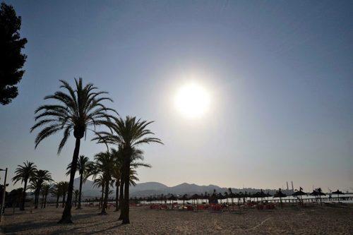 Bild 12 - Ferienwohnung Playa de Alcudia - Ref.: 150178-532 - Objekt 150178-532