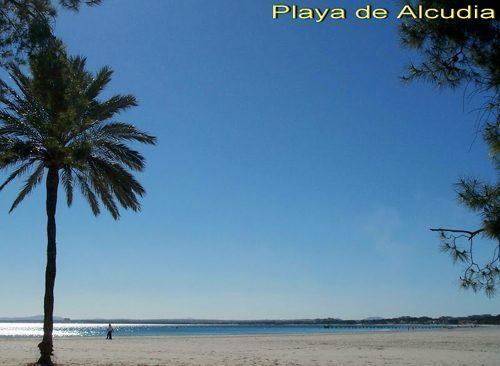 Bild 14 - Ferienwohnung Playa de Alcudia - Ref.: 150178-532 - Objekt 150178-532