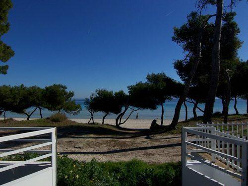 Bild 24 - Ferienhaus Playa de Alcudia - Ref.: 150178-539 - Objekt 150178-539