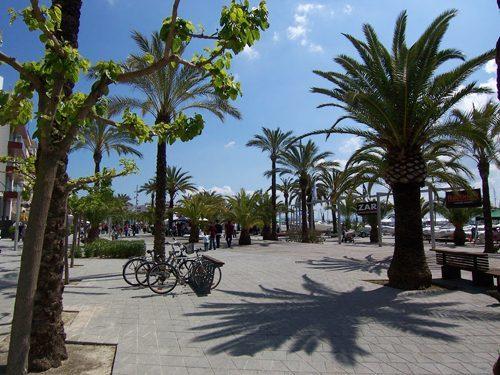 Bild 12 - Ferienwohnung Puerto Alcudia - Ref.: 150178-705 - Objekt 150178-705