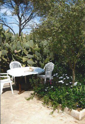 Bild 12 - Spanien Mallorca Ferienhaus Casa de Los Pinos - Objekt 1764-1