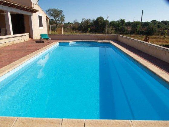 Swimmingpool - Ferienhaus Sa Tanca Mallorca - Objekt 2455-33