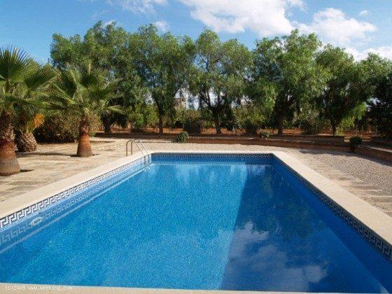 Pool - Mallorca Ferienhaus Campos Finca 2455-44