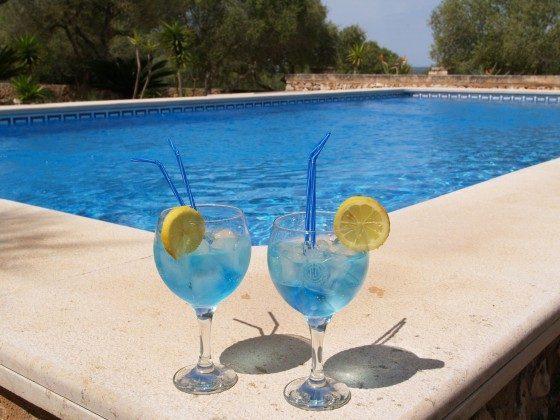 Pool Ferienhaus Caseta Palea Mallorca Ref.:2455-77