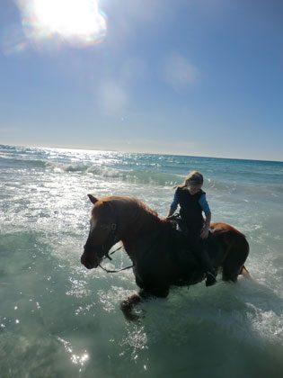 Mallorca Llucmajor Ferienwohnungen auf traumhafter Finca mit eigenen Pferden Ref. 62049 Bild 8