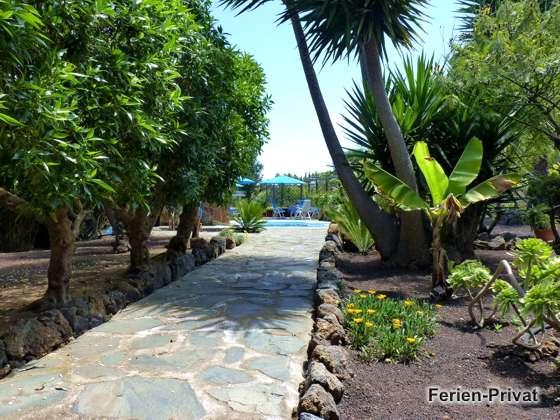 Garten und Weg zum Pool