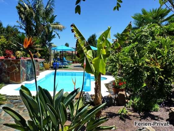 Blick aus dem Garten zum Pool