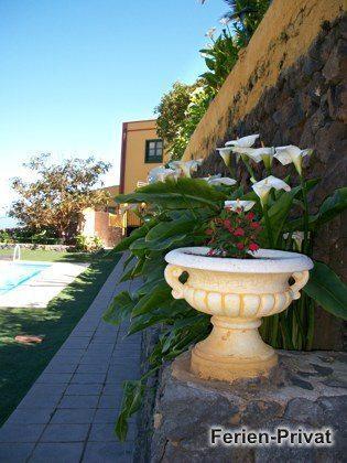 Pool und kleiner Garten