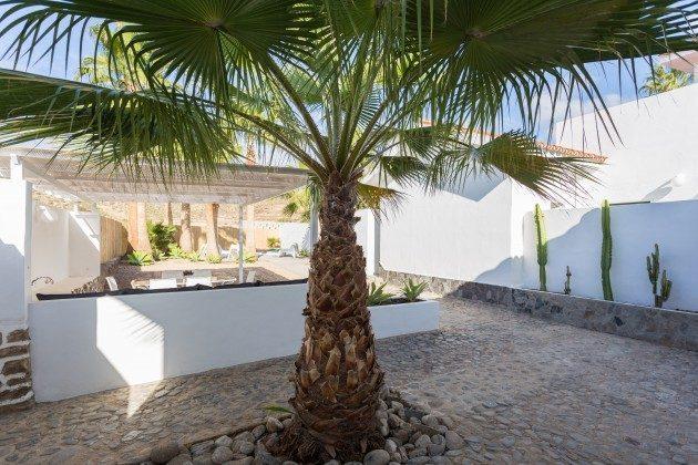 schattiger Platz unter einer Palme
