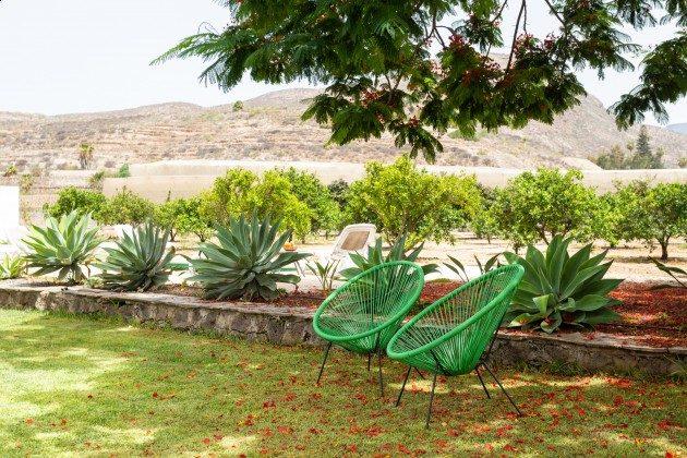TF 177919-3 schattiger Sitzplatz im Garten