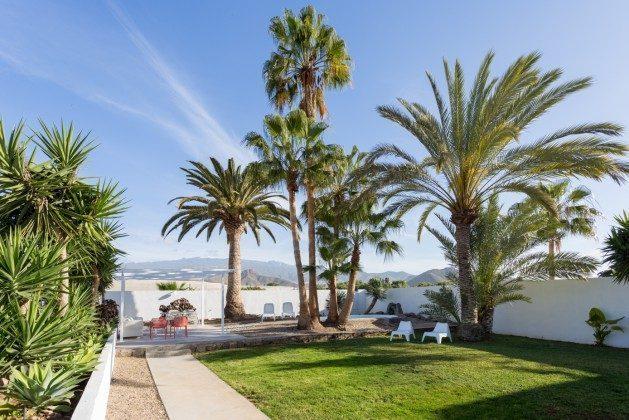 großer Garten mit Terrasse und privatem Swimmingpool